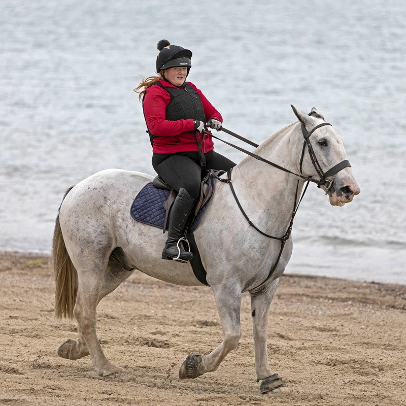 Horse on Weymouth Beach