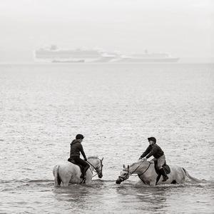 Horses in the Sea on Weymouth Beach