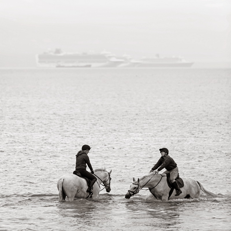 Horses in the Sea on Weymouth Beach