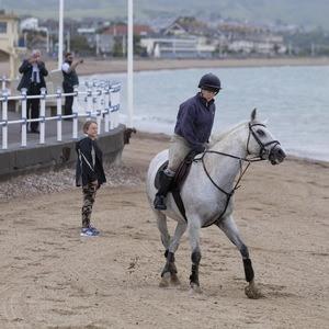 Horses on Weymouth Beach