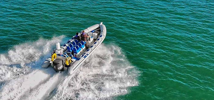 Rib Rides in Weymouth and Dorset